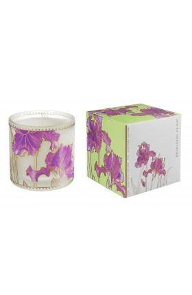 Designers Guild - Large Candle Iris 170 gr