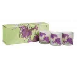 Designers Guild - Coffret de 3 bougies parfumées Iris