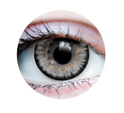 Contact Lenses - STARLIGHT ASH